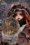 1/4 BJD Girl ,Andisi,Dried flower elf